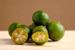 Kalamansi Frucht