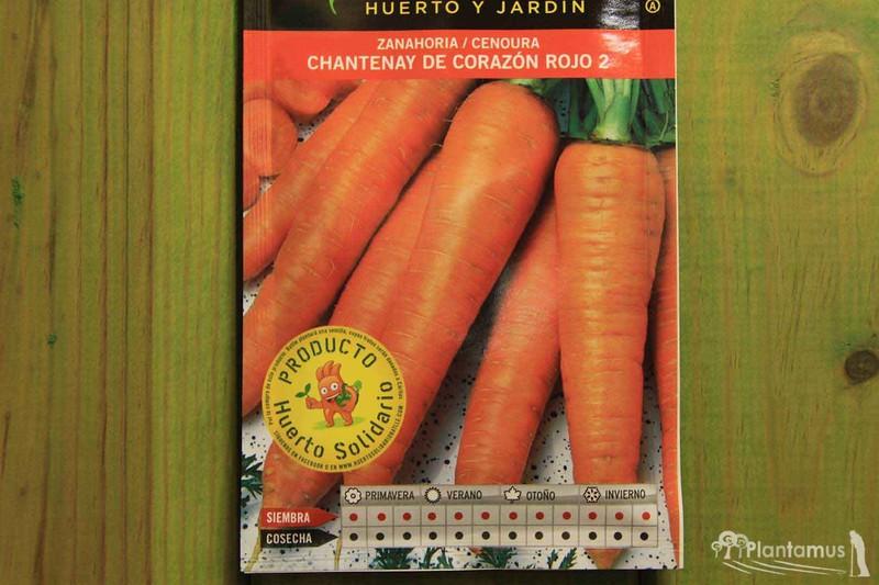 Semilla Horticola De Zanahoria Chantenay De Corazon Rojo Plantamus Viveros Online Su raíz, de forma cónica y. semilla horticola de zanahoria chantenay de corazon rojo 2 cenoura daucus carota
